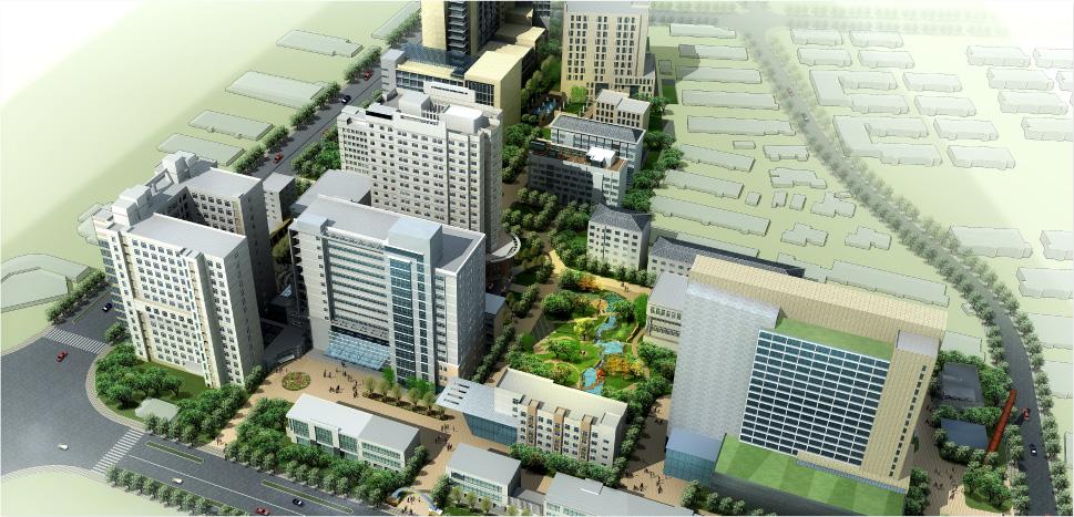 尚安在行动丨深耕医院精细化管理之新华医院